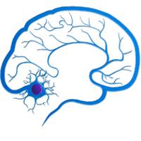 Эпилептолог